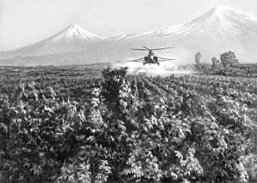 Опыление виноградников. Армянская Советская Социалистическая Республика.