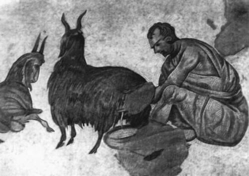 Византия. Доение козы. Мозаика пола Большого дворца в Константинополе. 6 в. (?). Византия.