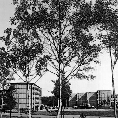 В. Типпель, Т. Каллас, Л. Петтай. 3-й микрорайон жилого района Мустамяэ в Таллине. 1964. Градостроительство.