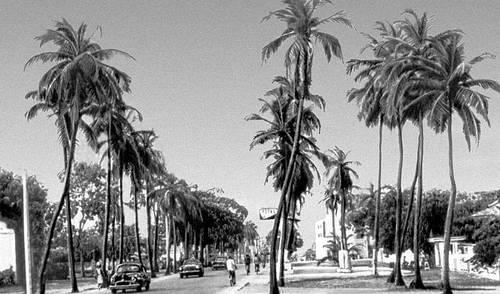 Улица в г. Котону. Дагомея.