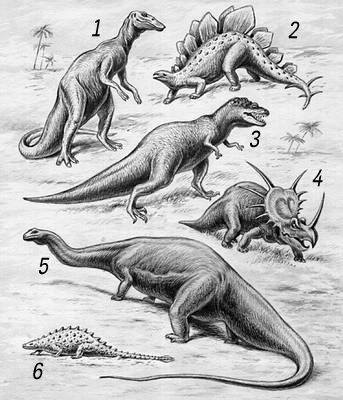 Динозавры: 1 — анатозавр; 2 — стегозавр: 3 — тарбозавр; 4 — стиракозавр: 5 — апатозавр; 6 — талорурус. Динозавры.