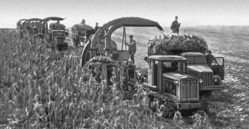 Уборка кукурузы групповым методом в колхозе «Гигант» Вулканештского р-на Молдавской ССР. Колхозы.