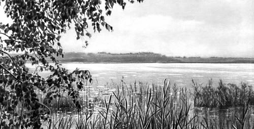 Пойменное озеро в бассейне реки Припять. Озёра.