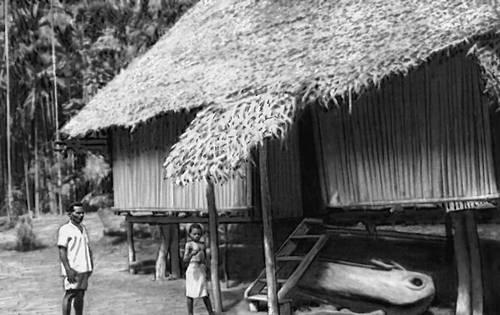 Жилище папуасов деревни Бонгу. Берег Миклухо-Маклая (о. Новая Гвинея). 1971. Папуасы.