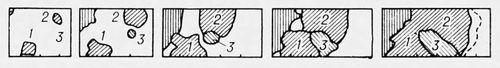 Рис. 1. Структура, характерная для конца первичной рекристаллизации. Рекристаллизация.