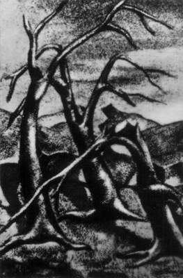 Сальвадор. Сальвадор Серменьо. «Засуха» Пироксилин. 20 век. Сальвадор.
