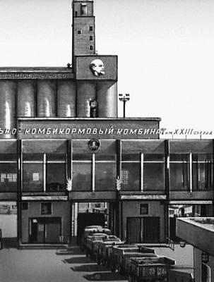 Семипалатинск. Мукомольно-комбикормовой комбинат. Семипалатинская область.