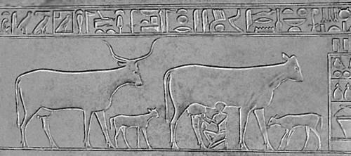 Скульптура. Углубленный рельеф саркофага принцессы Кауит (Древний Египет). Известняк. Конец 3-го тыс. до н. э. Египетский музей. Каир. Скульптура.