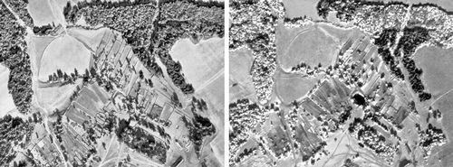 Аэроснимки одного и того же участка местности: слева — обычный, справа — инфрахроматический. На рисунке справа деревья четко разделены на хвойные (более тёмные) и лиственные (светлые), тёмное пятно в центре — водоём, который на обычном снимке сливается с общим фоном. Спектрозональная аэрофотосъёмка.