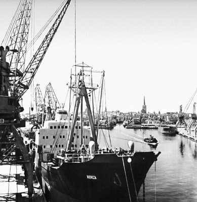 Таллин. В Таллинском морском торговом порту. Таллин.