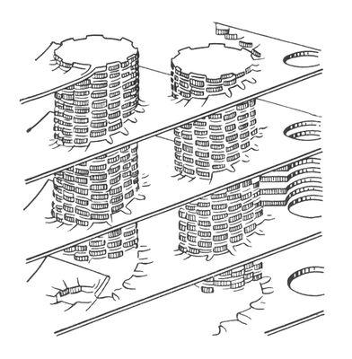 Модель пластинчатой (ламелярной) системы хлоропластов. Столбики — граны, образованные тилакоидами. Хлоропласты.