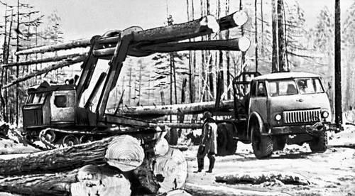 Читинская область. Заготовка леса для Катангарского лесопромышленного комплекса. Читинская область.